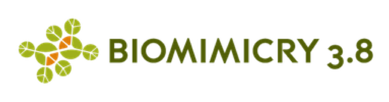 biomimicry 1